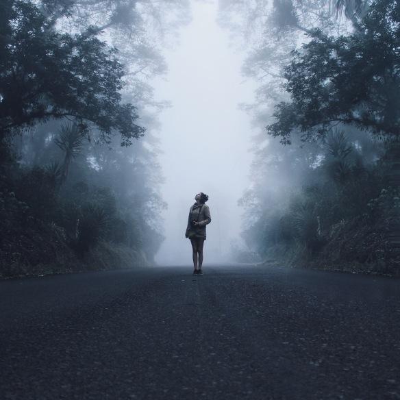 En busca de la Neblina